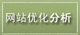 漯河网站优化分析诊断